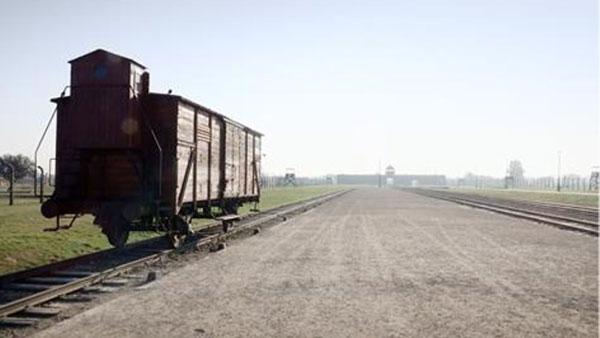 Het geheugen van Auschwitz